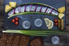 Festin russe avec des harengs, des oignons, des pommes de terre et la vodka Images stock