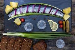 Festin russe avec des harengs, des oignons, des pommes de terre et la vodka Images libres de droits