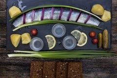 Festin russe avec des harengs, des oignons, des pommes de terre et la vodka Image stock