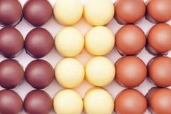 Festins recouverts de chocolat de guimauve image stock