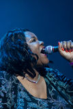 Festival 2010 de bleus de Rawa Photographie stock