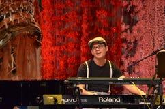Festival 2011 del mosaico de Singapur fotos de archivo