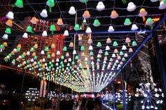 Festival 2012 de Guangzhou des lumières international Image libre de droits