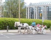 Festival 2012 del tulipán de Ottawa - caballo y carro 2 Fotografía de archivo