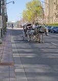 Festival 2012 del tulipán de Ottawa - caballo y carro Imagen de archivo libre de regalías