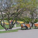 Festival 2012 del tulipán de Ottawa - sentándose en parque Foto de archivo