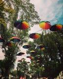 festival Arkivbild