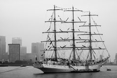 Festival alto 2014 della nave di Greenwich Fotografia Stock Libera da Diritti