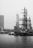 Festival alto 2014 do navio de Greenwich Imagem de Stock Royalty Free