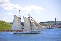 Festival alto dos navios de Nova Escócia 2009 Imagem de Stock