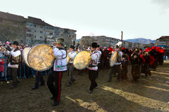 Festival ancestral customs and traditions. Few drummers play for bears on festival ancestral customs and traditions from Comanesti, Bacau, 30 december 2011 Stock Image