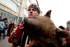 Festival ancestral customs and traditions. A man with a bear head on Festival ancestral customs and traditions from Comanesti, Bacau Royalty Free Stock Image