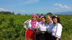 Festival anual de la rosa-cosecha en Bulgaria metrajes