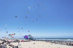 Festival anual do voo do papagaio foto de stock