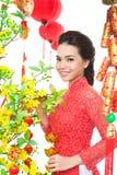 Festival asiático Fotografia de Stock Royalty Free