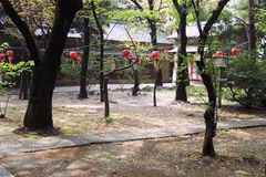 Festival asiatique de célébration Image stock