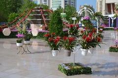 Festival av blommor i den Baku staden, Azerbajdzjan Arkivbild
