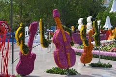 Festival av blommor i den Baku staden, Azerbajdzjan Arkivfoton