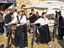 Festival av druvaskörden Arkivfoton