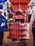 Festival av druvaskörden i chusclan Royaltyfria Foton