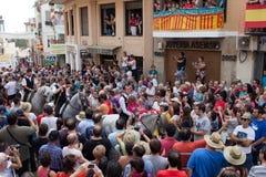 Festival av tjurar och hästar i Segorbe, Spanien arkivfoto
