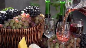 Festival av ungt vin stock video