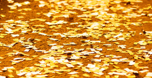 festival background with gold and silver sequins that lie on the pavement the road bokeh. Royalty Free Stock Photo