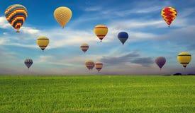 Festival chaud de ballons à air au-dessus de champ vert Images stock