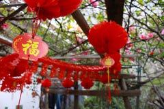 Festival cinese Immagini Stock