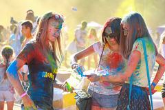 Festival of colors royalty free stock photography