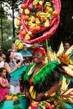 Festival costume Royalty Free Stock Image