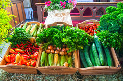 Festival da colheita Foto de Stock