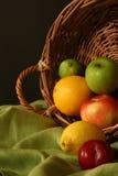 Festival da colheita da acção de graças Imagem de Stock