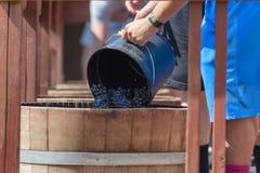 Festival da colheita do esmagamento do vinho em Carlton Oregon foto de stock royalty free