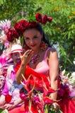Festival 2013 da flor de Madeira Foto de Stock