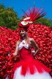 Festival 2013 da flor de Madeira Foto de Stock Royalty Free