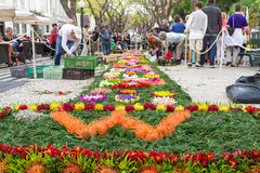 Festival da flor de Madeira, rua cênico em Funchal, Portugal Fotos de Stock
