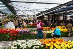 Festival da flor em Keukenhof na mola em março de 2017 Imagens de Stock Royalty Free