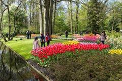 Festival da flor em Keukenhof na mola em março de 2017 Fotos de Stock Royalty Free