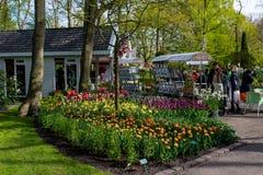 Festival da flor em Keukenhof na mola em março de 2017 Imagem de Stock