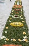 Festival da flor - os tapetes florais famosos no centro de cidade de Funchal ao longo do passeio central de Avenida Arriaga madei Imagem de Stock