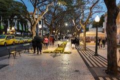 Festival da flor - os tapetes florais famosos no centro de cidade de Funchal ao longo do passeio central de Avenida Arriaga madei Fotografia de Stock Royalty Free