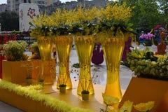 Festival das flores na cidade de Baku, Azerbaijão Foto de Stock