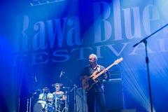 Festival 2014 de bleus de Rawa : Shawn Holt et les larmes Photo libre de droits