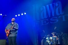 Festival 2014 de bleus de Rawa : Shawn Holt et les larmes Image libre de droits