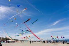 Festival de cerf-volant Photo libre de droits