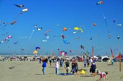 Festival de cerf-volant Photo stock