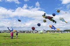 Festival de cerf-volant Image stock