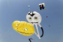 Festival de cerf-volant Images stock