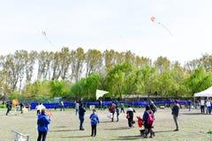 Festival de cerf-volant, personnes heureuses photo libre de droits